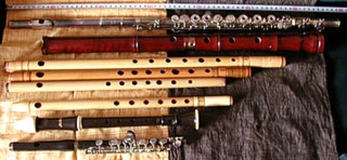 ten-types-of-musical-instruments-you-can-learn-to-play