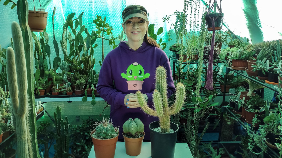 I hope you found these tips useful and may your cacti flower in the spring!