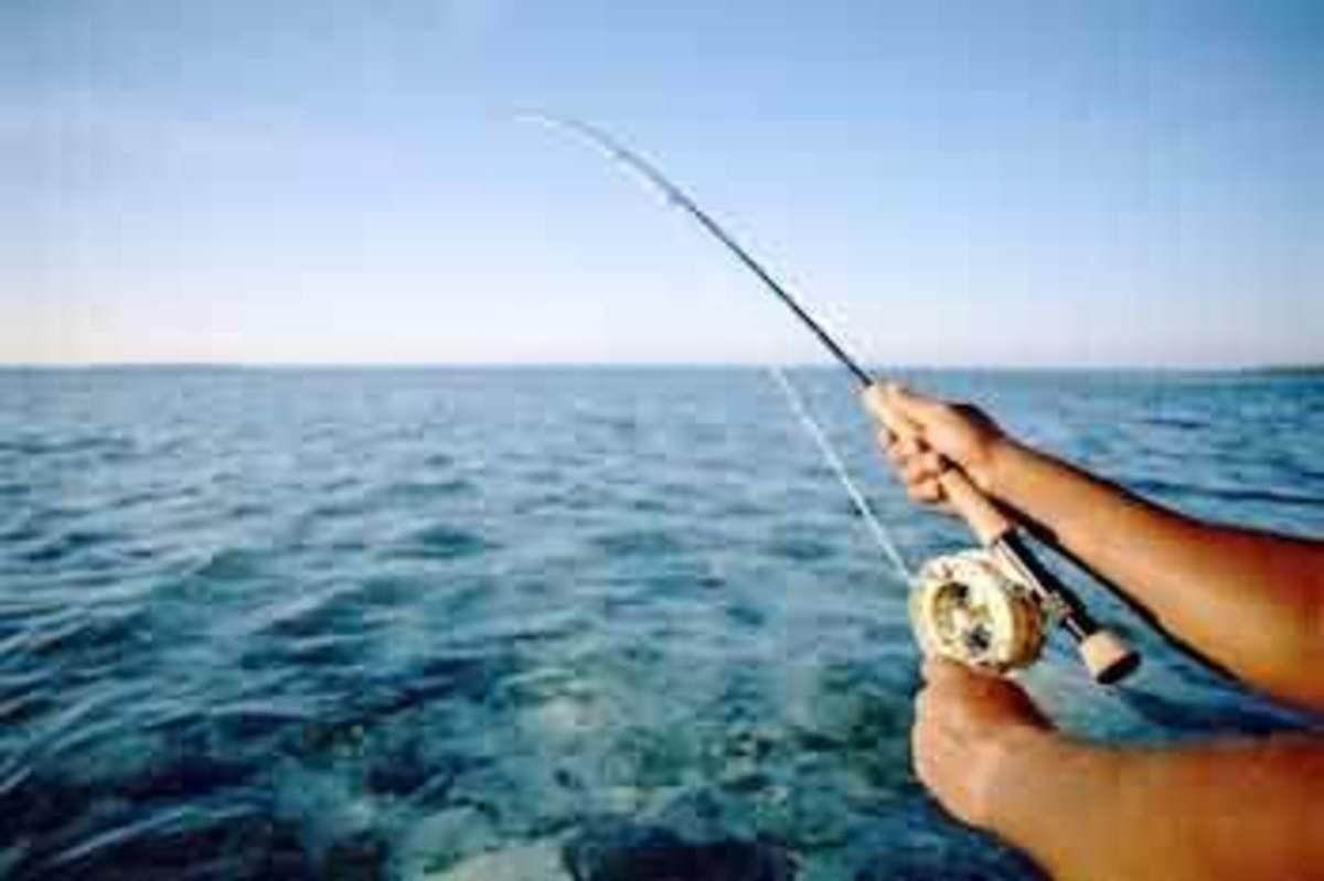 Deep Sea Fishing, Gulf of Mexico