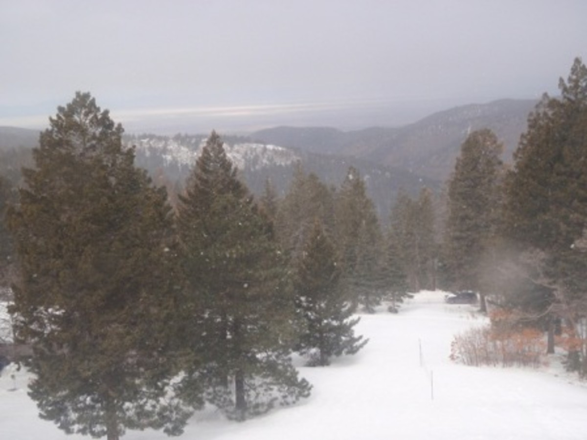 "What a Winter View looks like from ""The Lodge"" which sits High in the Mountains of Cloudcroft, New Mexico"