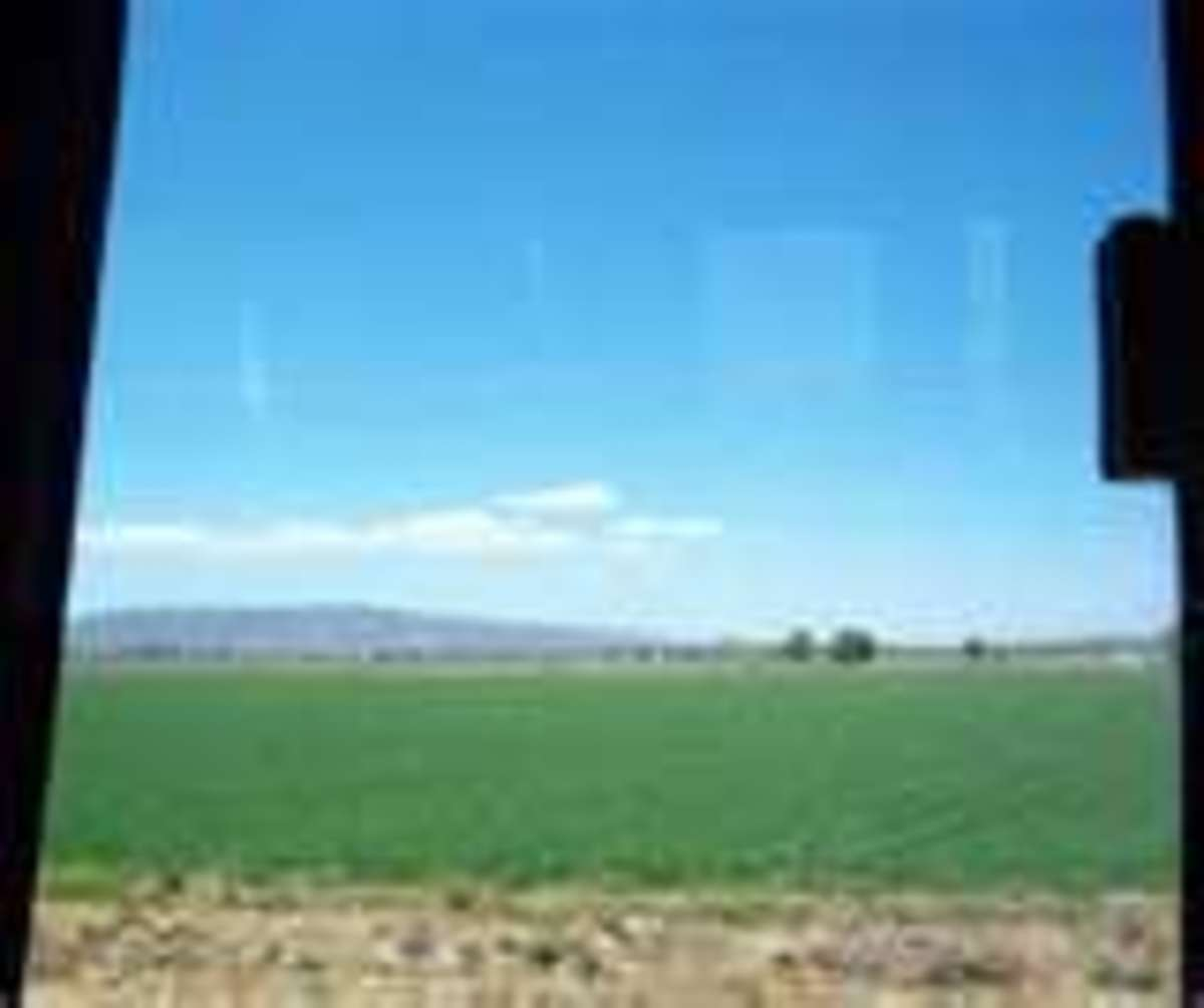 """A """"Sea of Green"""", Could be: Hinton, Oklahoma (Maybe...too much hill in the background...?)"""