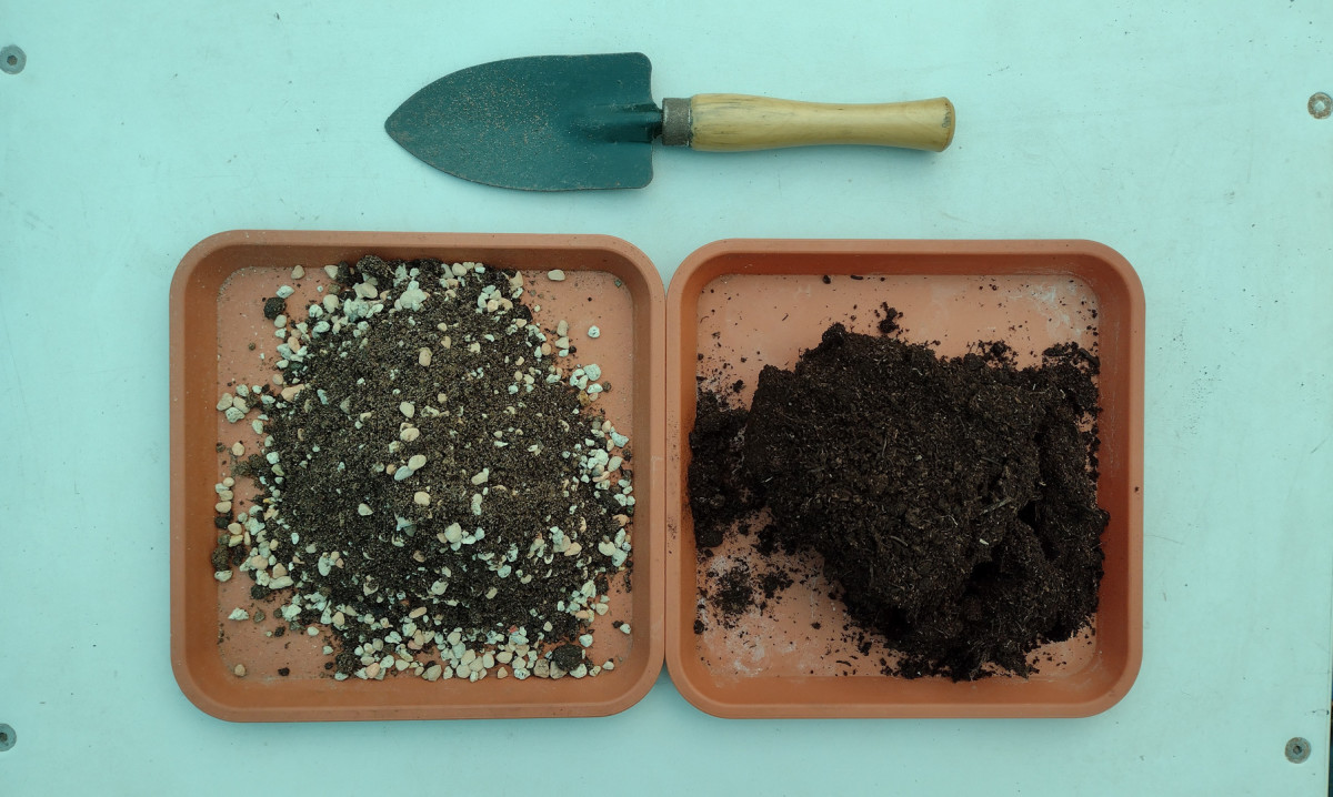 What's the difference? Comparing cacti and succulent soil to regular potting soil.