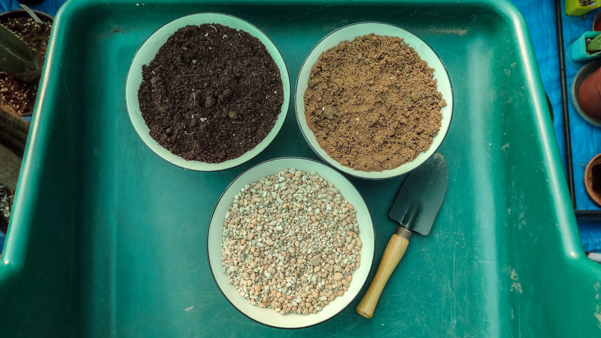 Use equal parts soil, grit, and horticultural sand to create the perfect cactus and succulent potting mix.