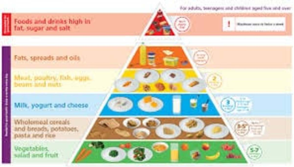Nutrient Value Of Diet For Your Healthy Life Style