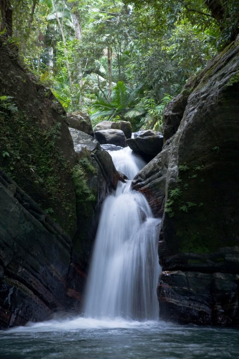 Discovering Puerto Rico: Ecotourism Destination