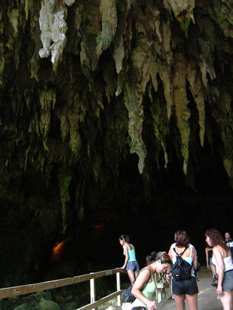 Stalactites at Parque de las Cavernas de Camuy