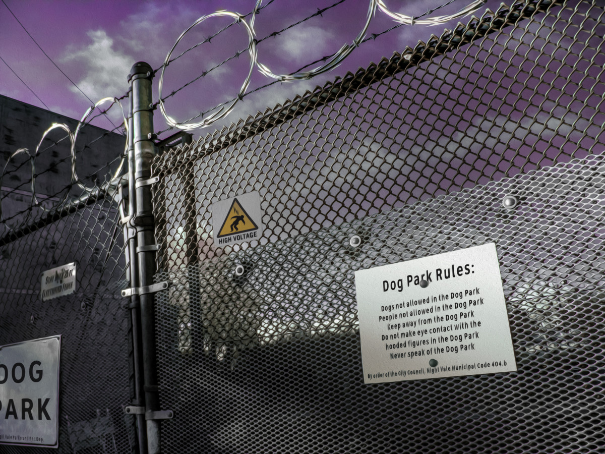The Night Vale Dog Park fence is electrified. Do not go into the Dog Park.