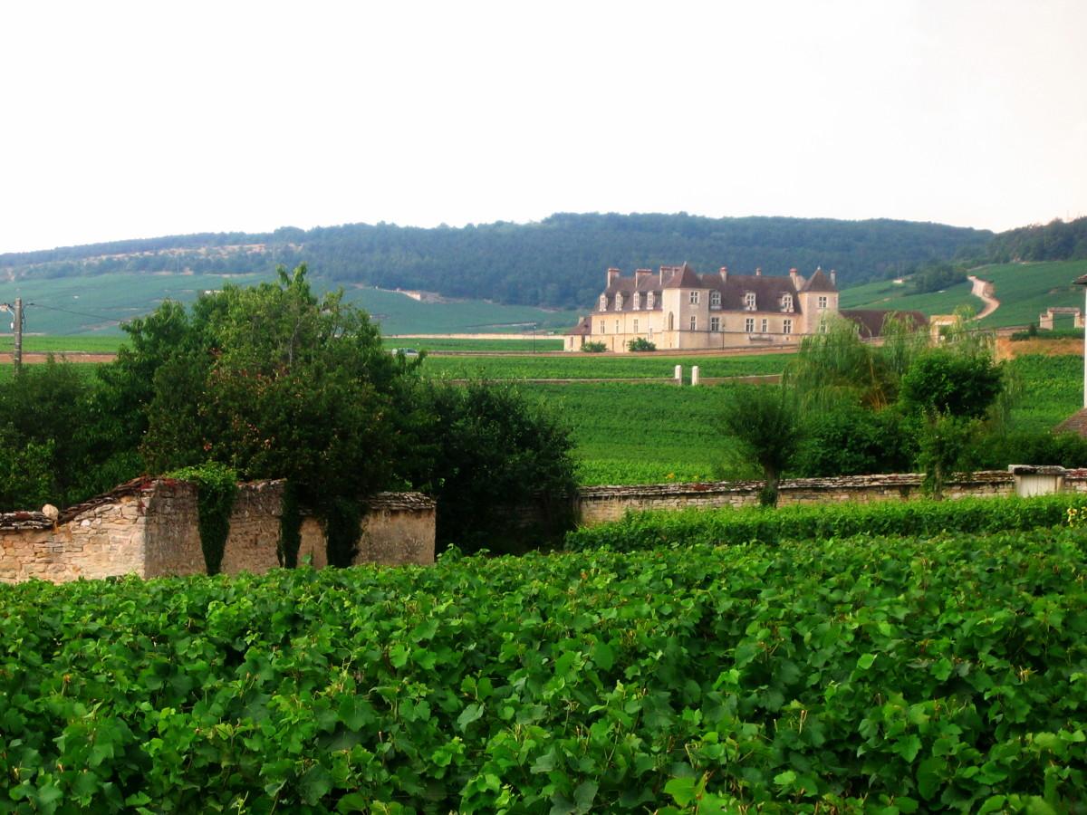 Chteau Vougeot, Bourgogne, France.