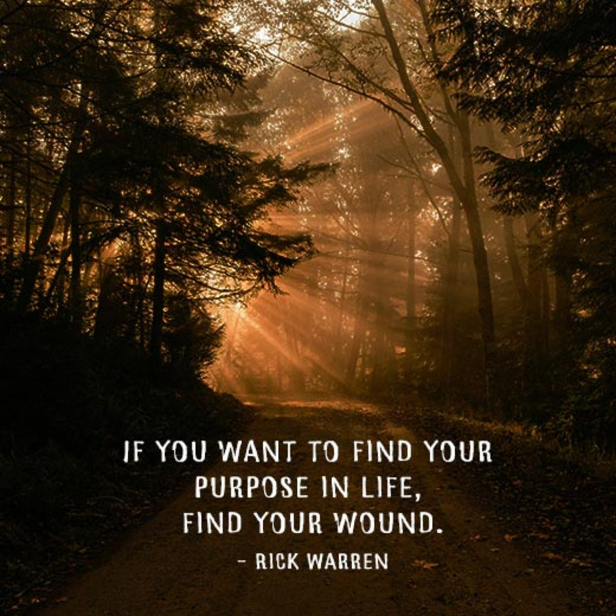 """""""If you want to find your purpose in life, find your wound."""" - Rick Warren"""