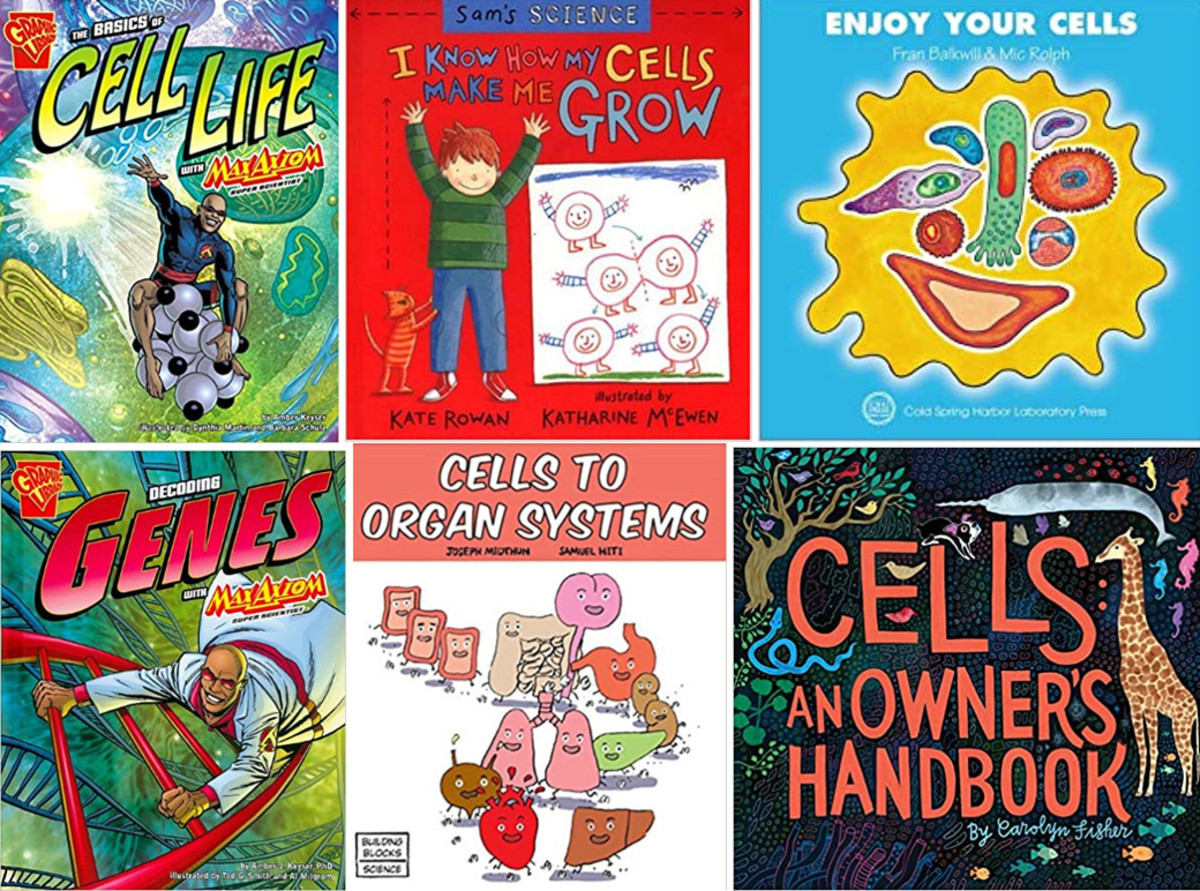 Children's Books on Cells and Genes
