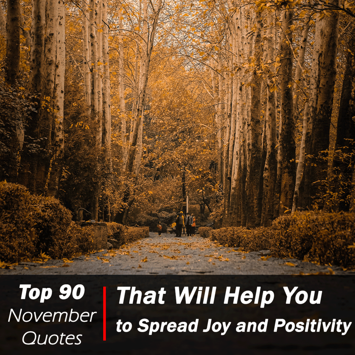 Top 90 November Quotes That Will Help You to Spread Joy and Positivity