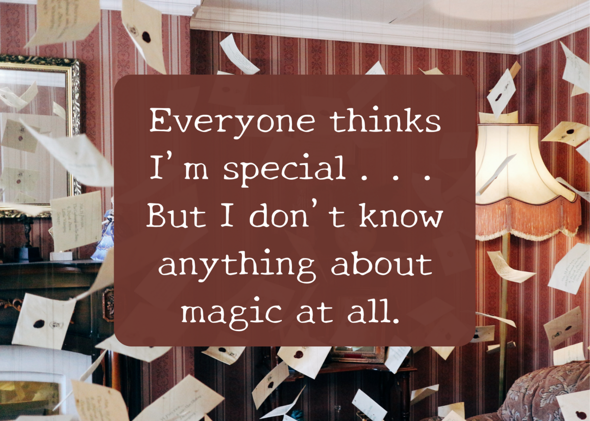 """This is one of Harry's quotes from the beginning of """"Sorcerer's Stone"""" (or """"Philosopher's Stone,"""" depending on where you live)."""