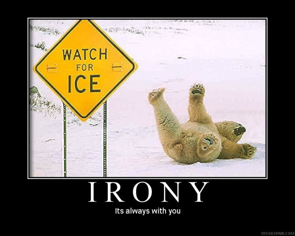 The World of Irony
