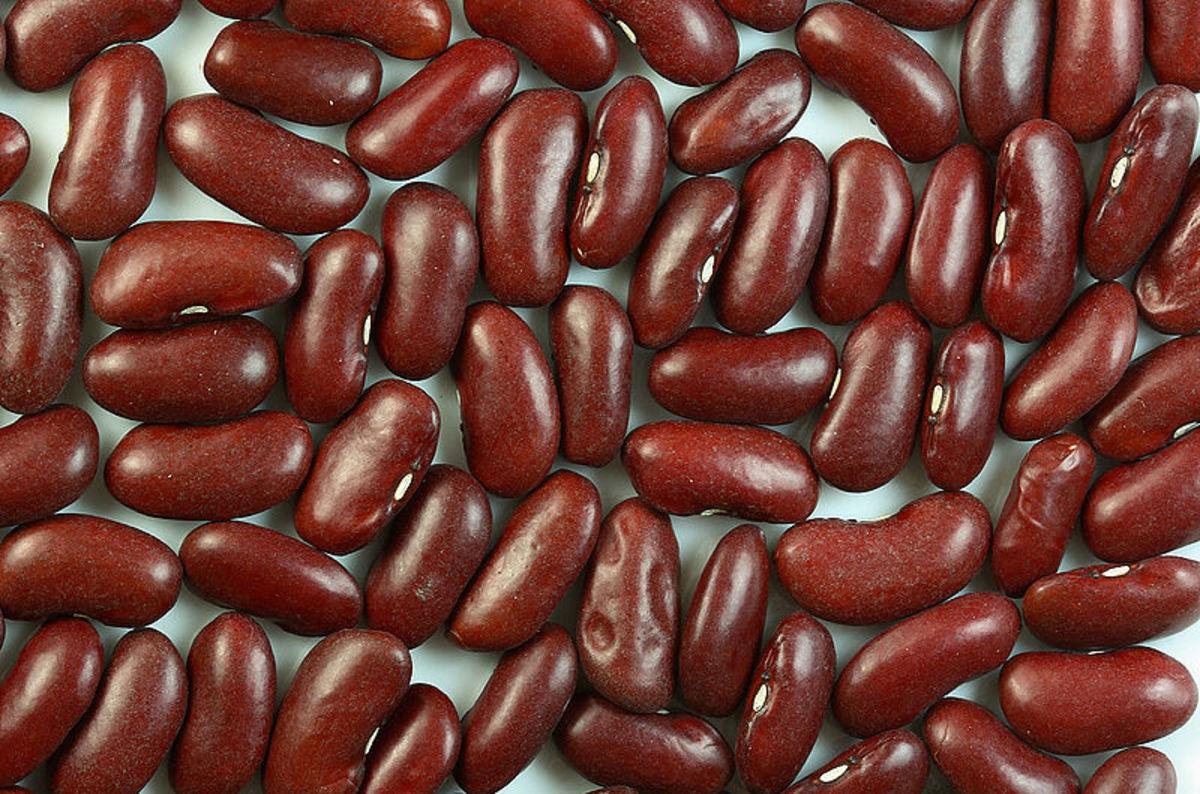 Kidney Beans are delicious especially in Chili Con Carne.