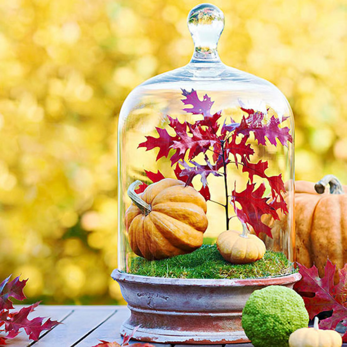 Fill a globe full of fall decorations, such as small pumpkins and colorful leaves.