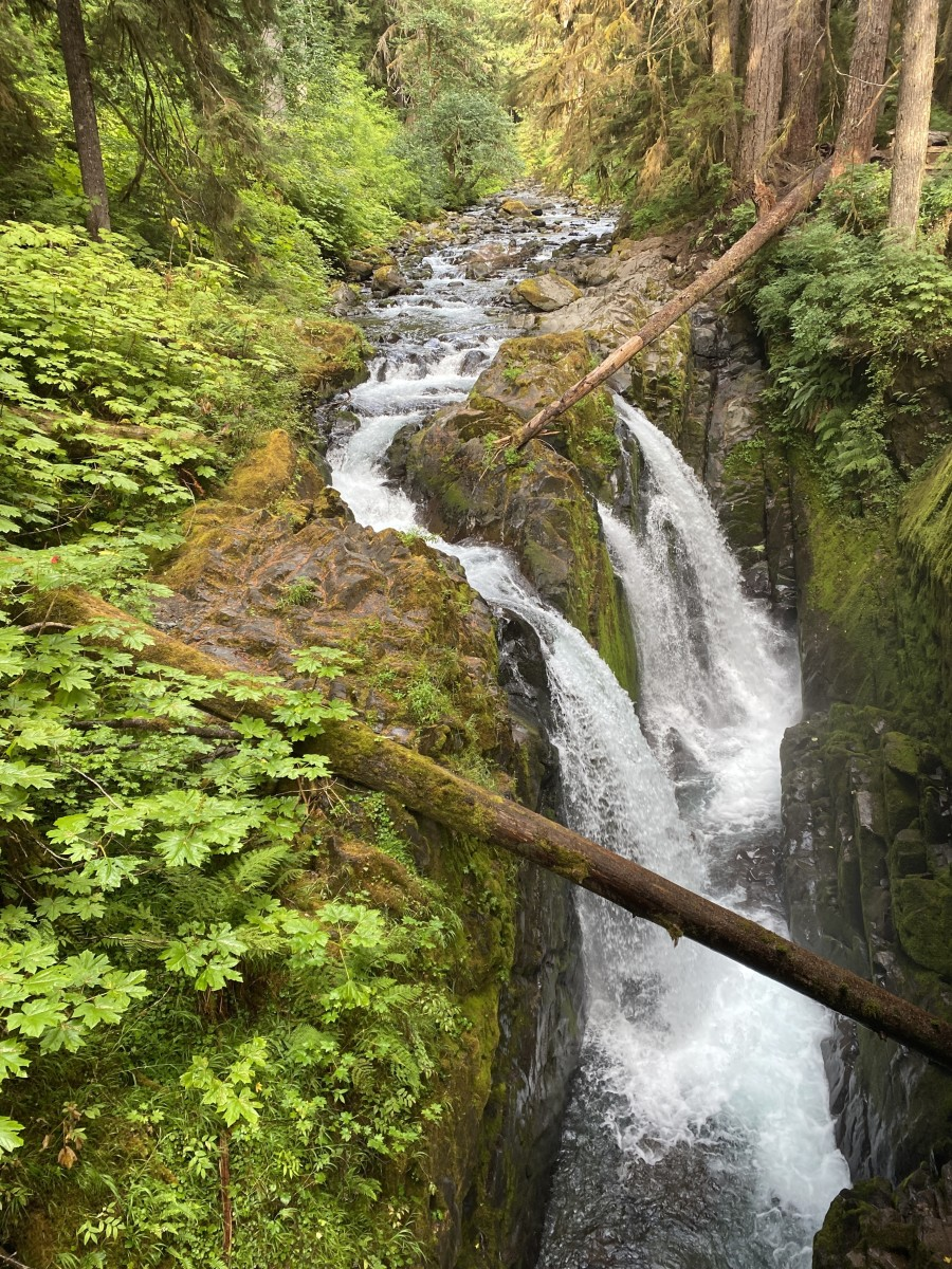 My Summertime Destination: Sol Duc Falls at the Olympic National Park