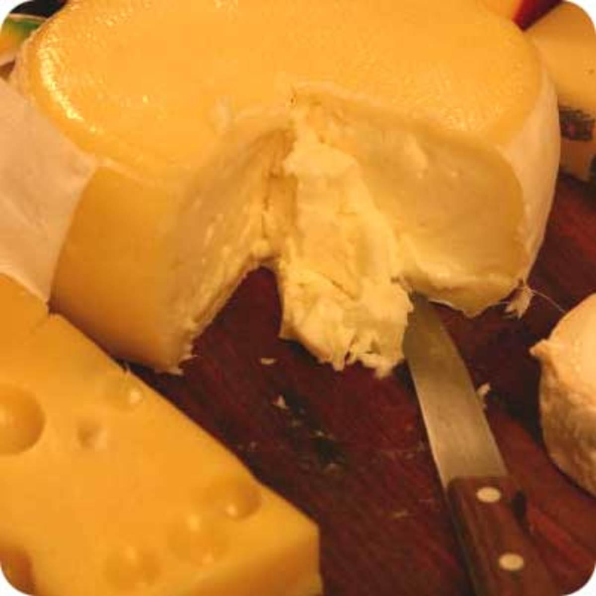 The Wonderful World of Cheese!