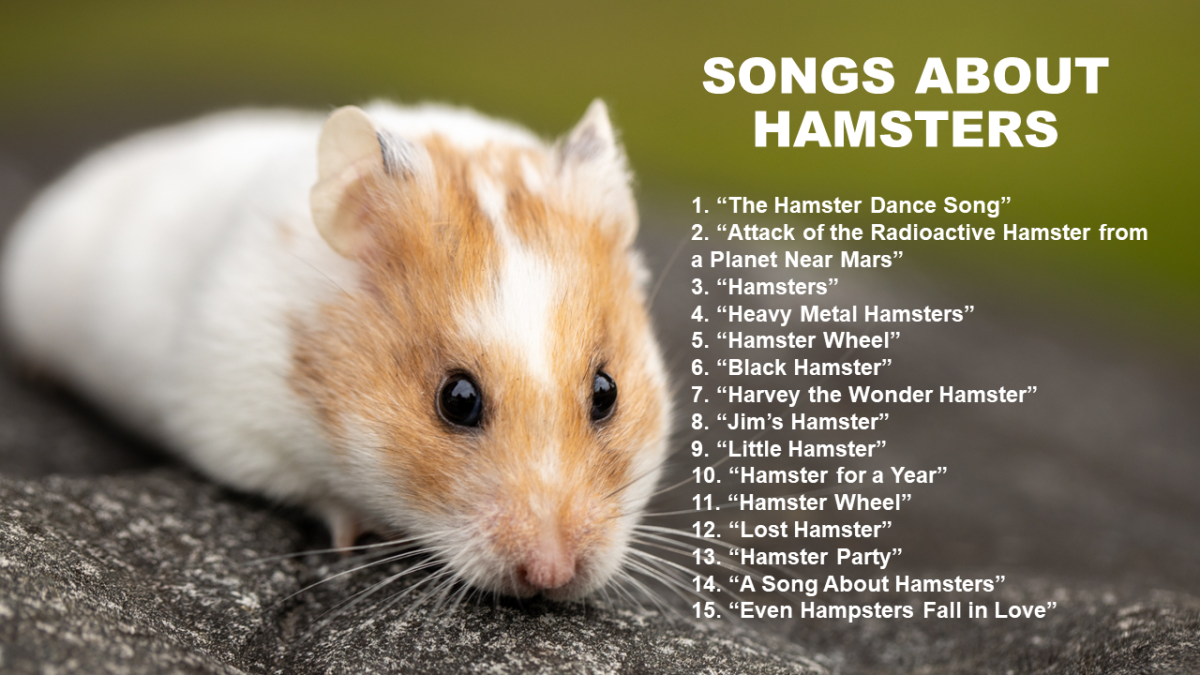 40 Songs About Hamsters