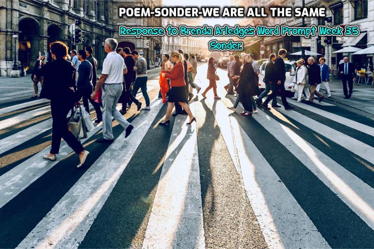 Poem-Sonder-We are All the Same-Response to Brenda Arledge's Word Prompt Week 35-Sonder.