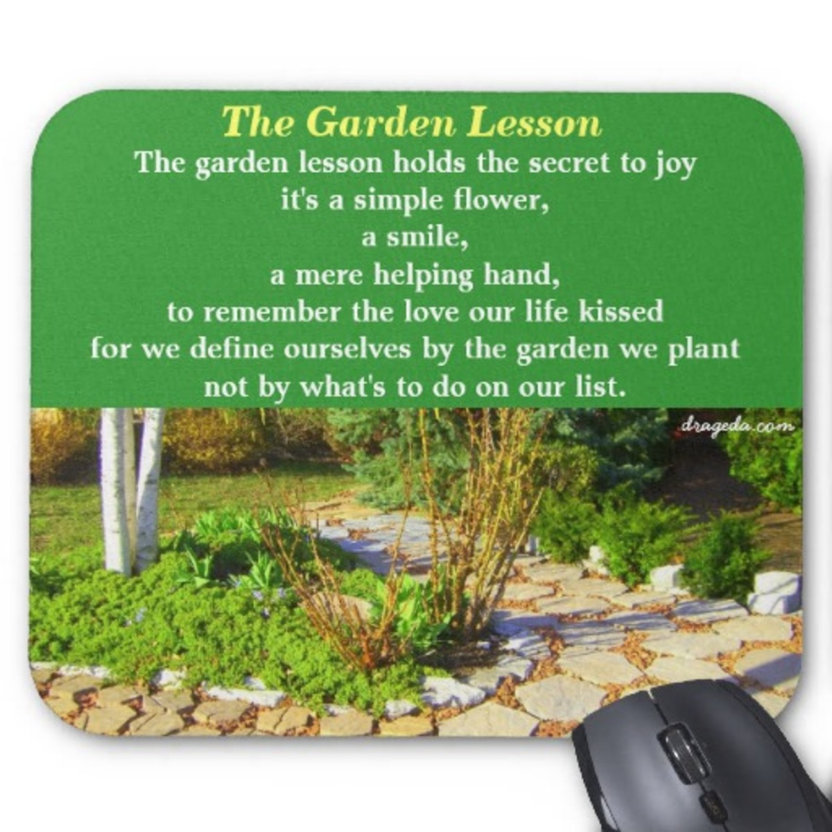 The Garden Lesson: The Secret to Life