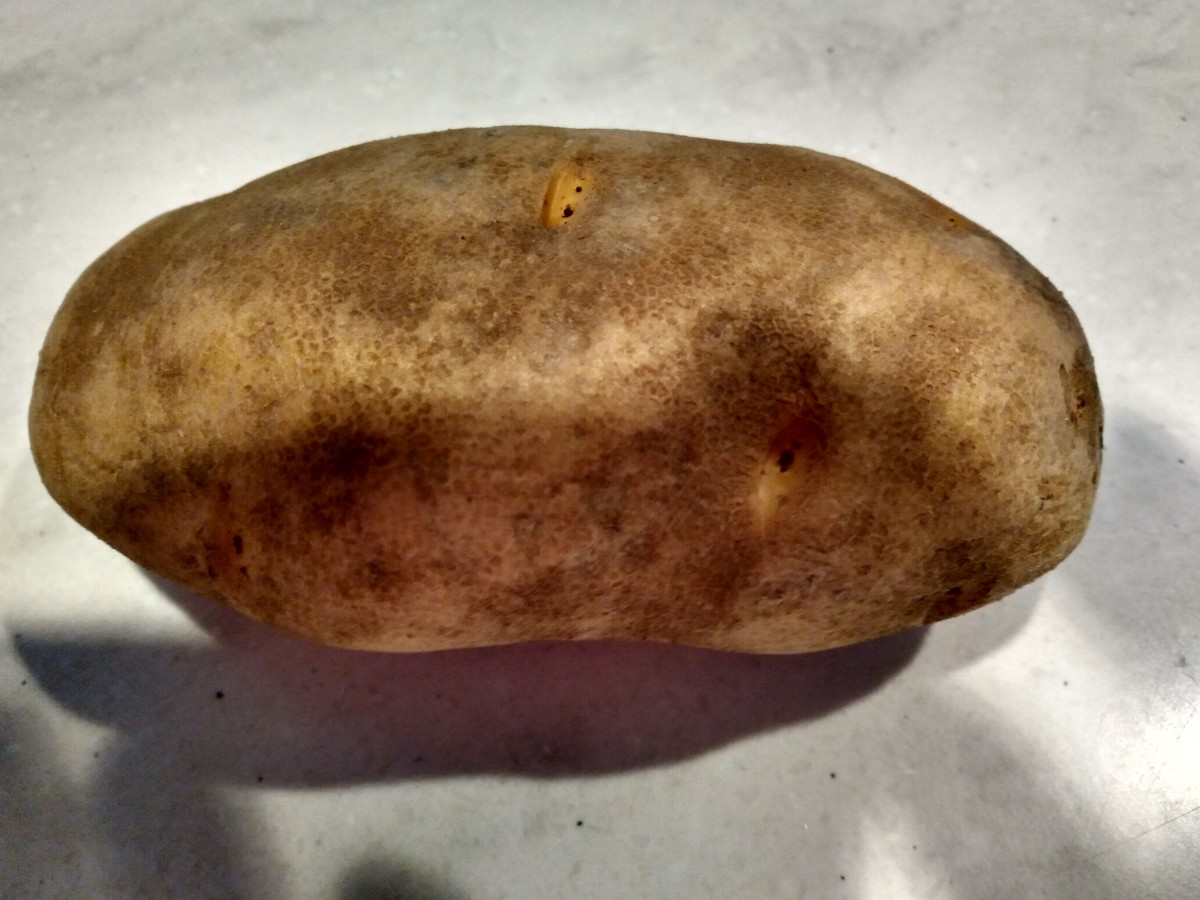 this is what a russet potato looks like