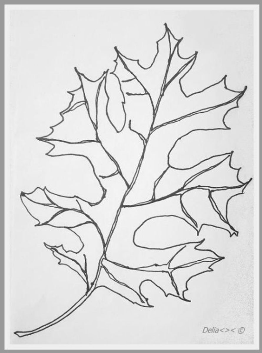 Maple leaf one-line-doodle