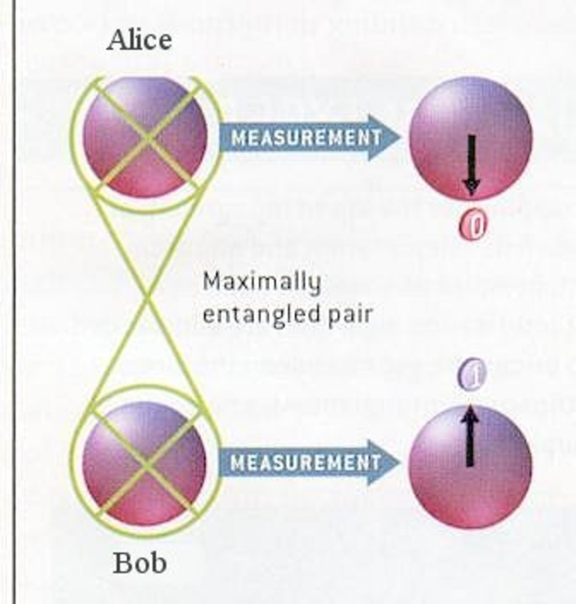 Two photons with fully entangled spins