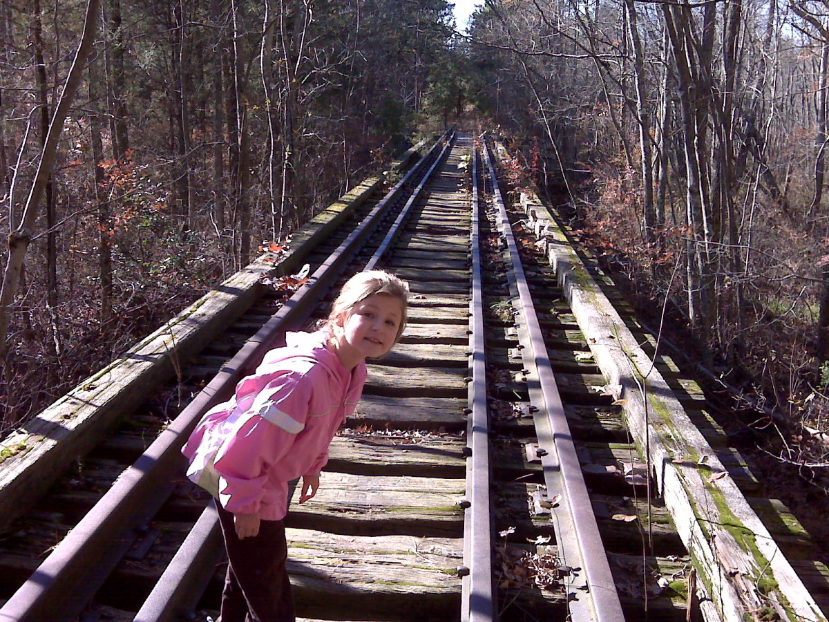 Railroad Trestle behind Atsion.