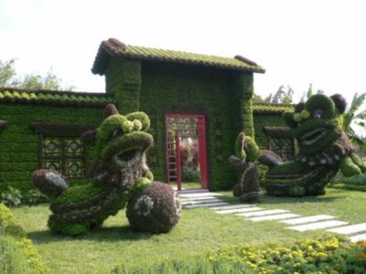 Topiary Fu Dogs In China