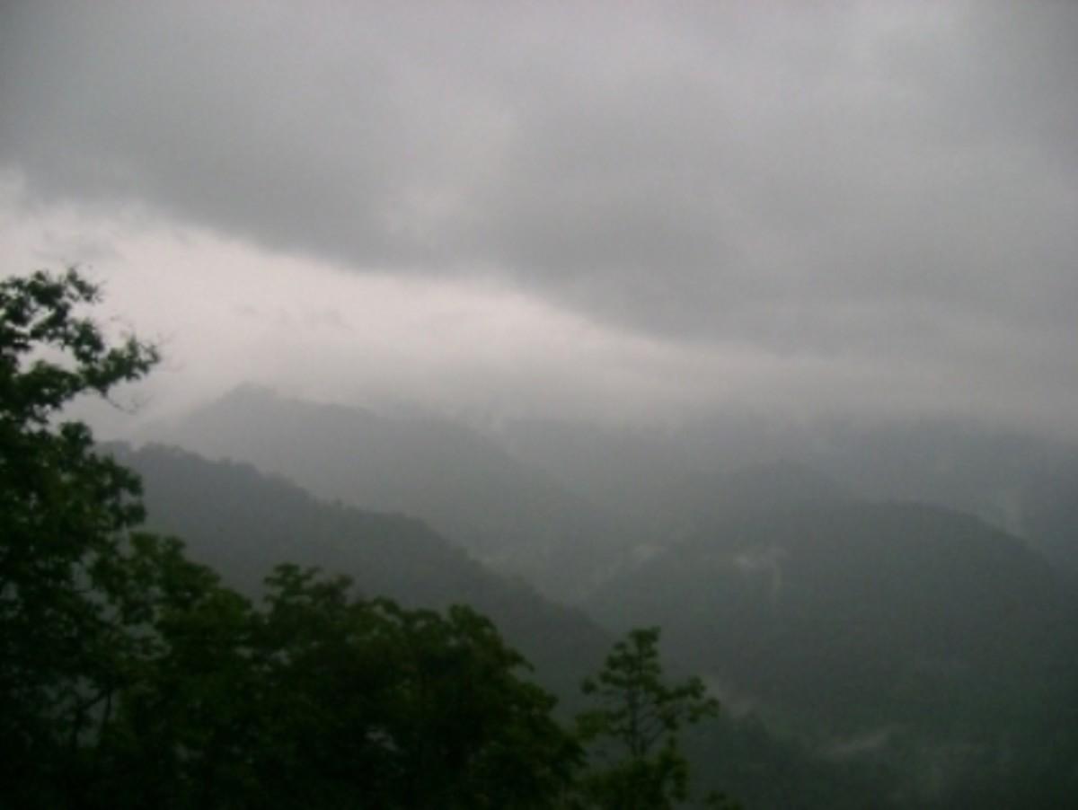 Moozhiyar in Fog
