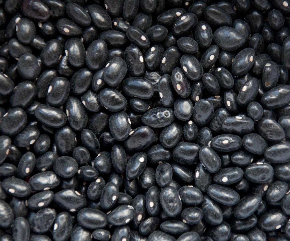 Black Honduran-grown beans.