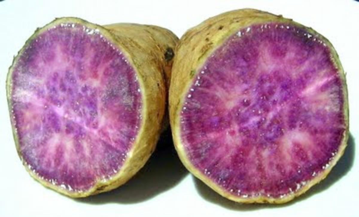 Okinawan purple sweet potato