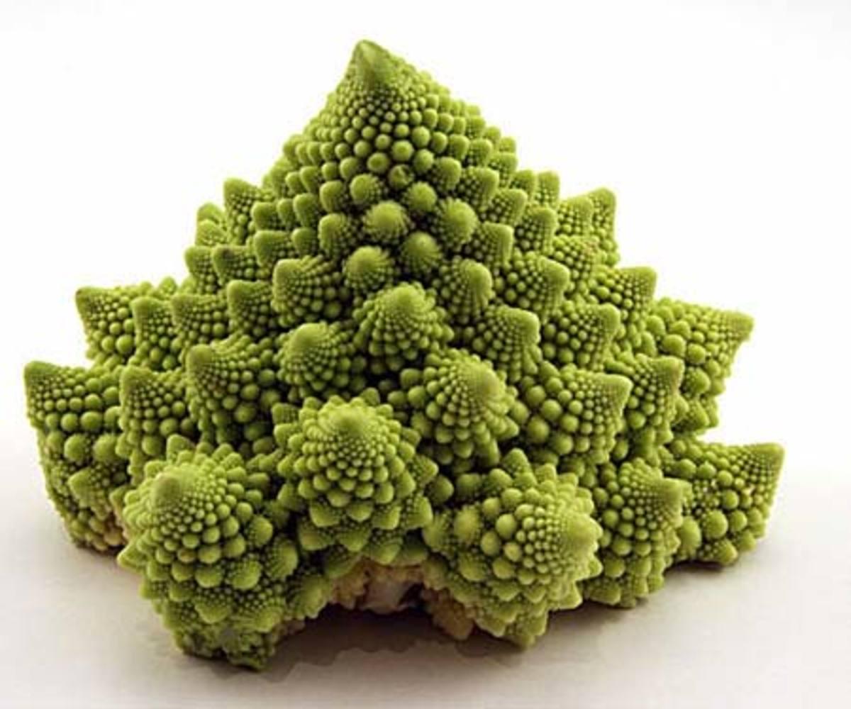 Roman cauliflower (click to enlarge)