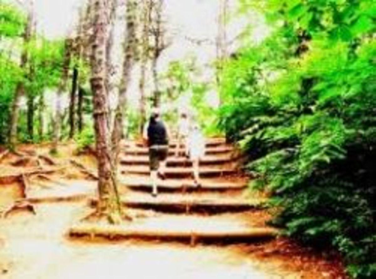asan-hiking.jpg