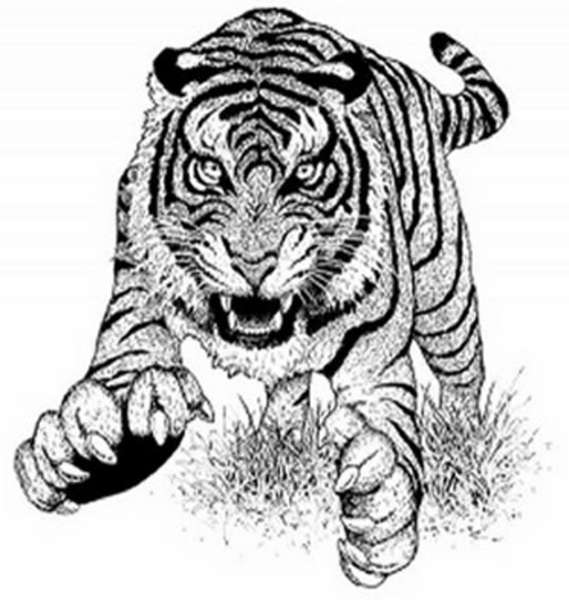 Endangered Animal Mammals Kids Coloring Pages Free ...