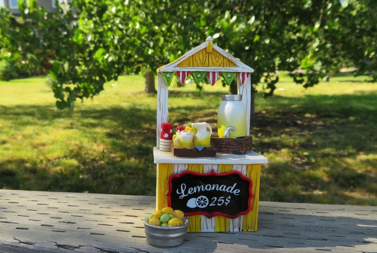 A lemonade stand could make either a profit or a loss