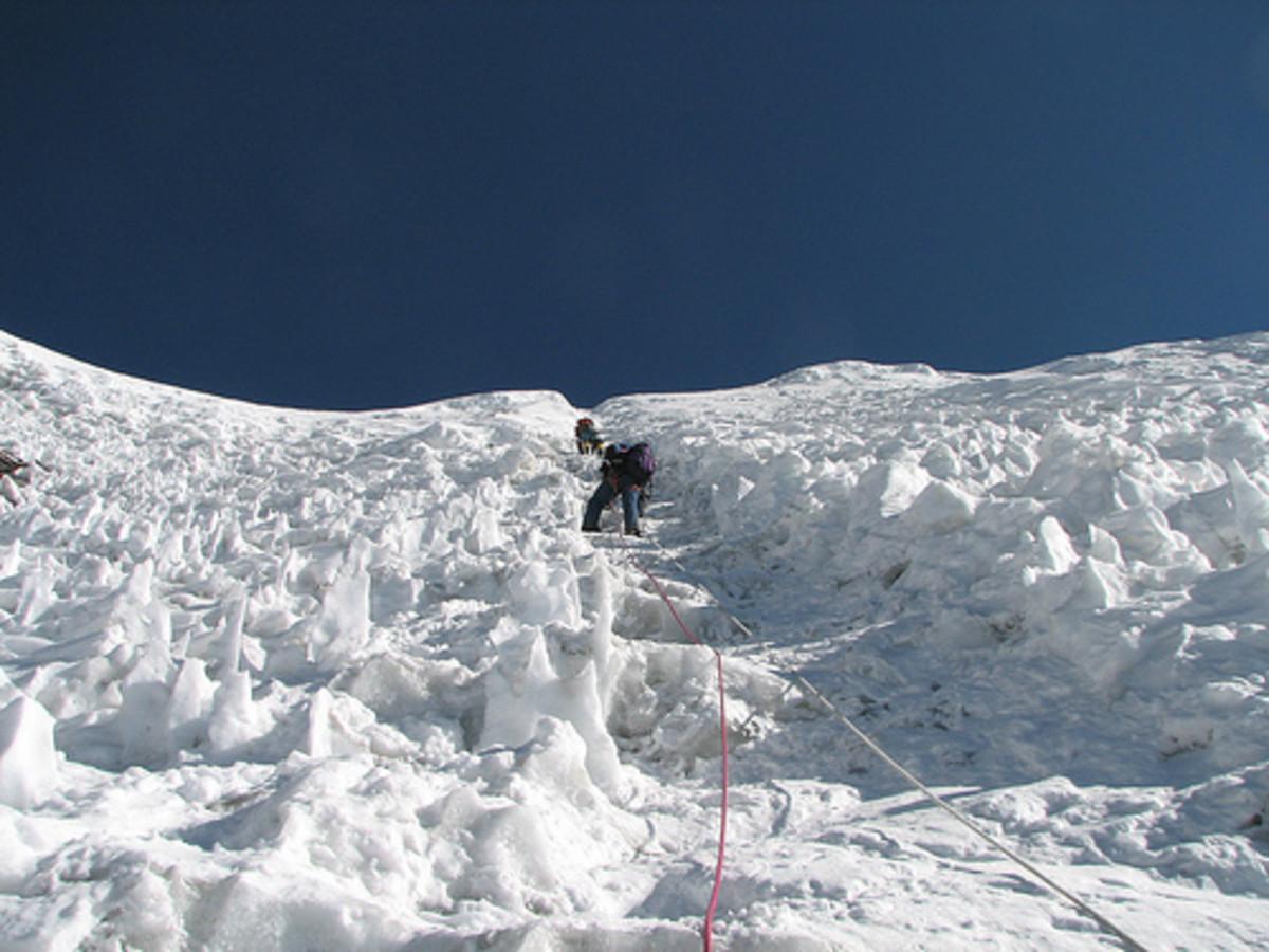 Sherpa Guide...