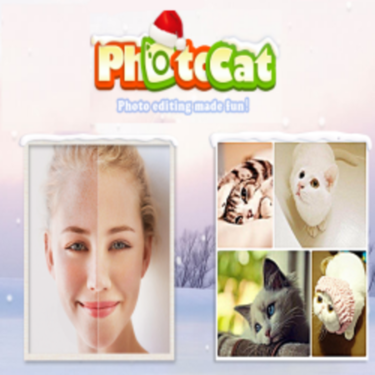 Photocat Photo Editor