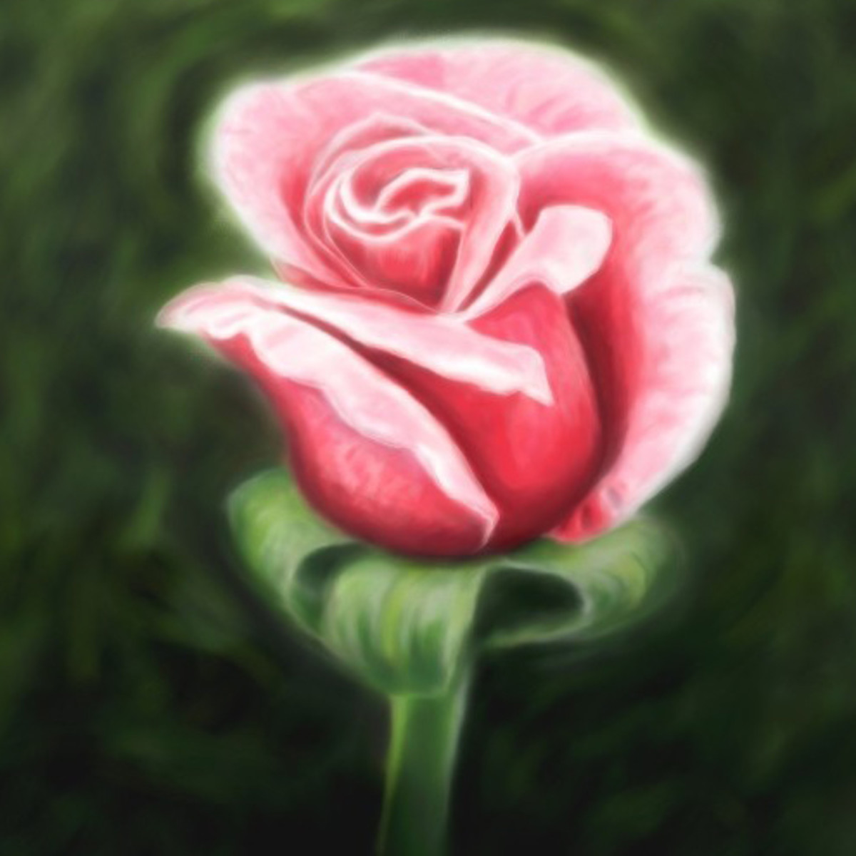 A rose bud offered to God