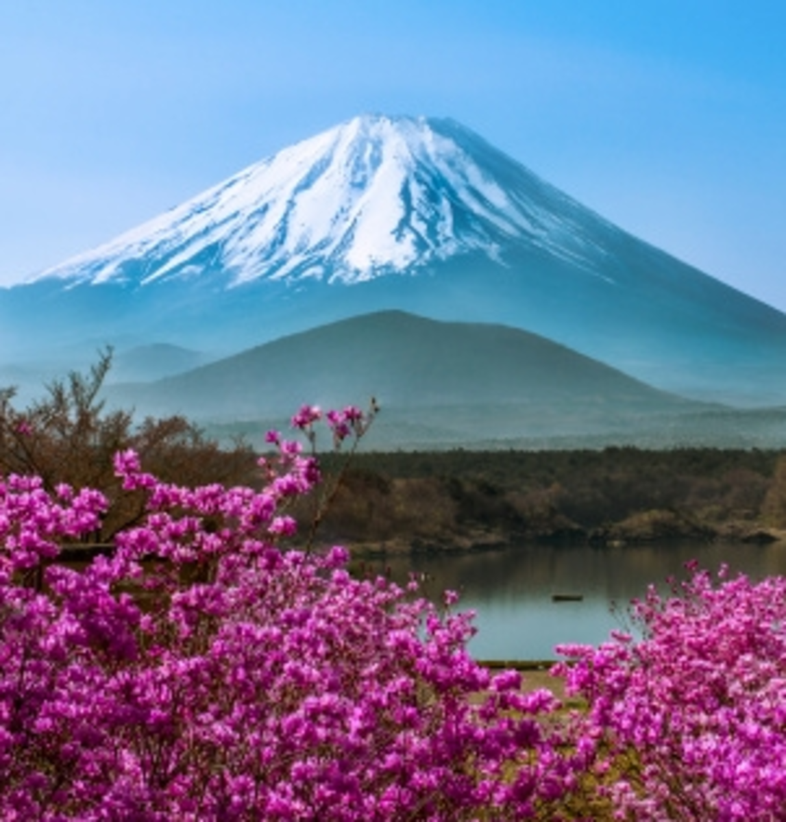 The Only Japan Travel Guide You'll Ever Need