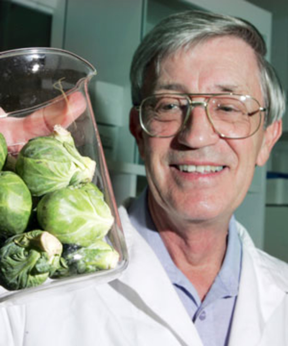 BRUSSEL SPROUTS KILL CANCER