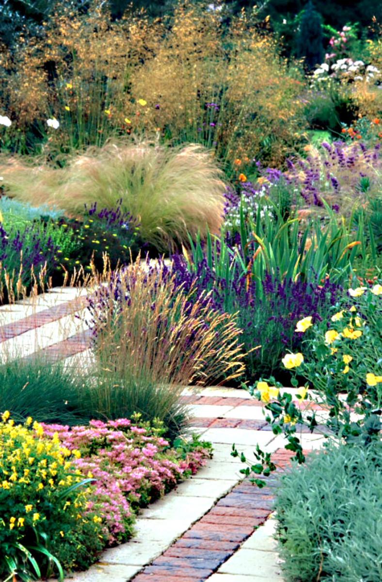 The Cambridge University Botanic Garden And John Stevens