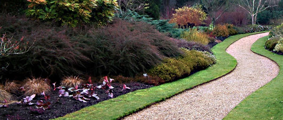 The Long and Winding Path through the colourful Cambridge University Botanic Garden