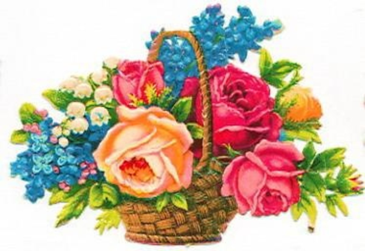 A basket of mixed flowers for a friend is always welcome!