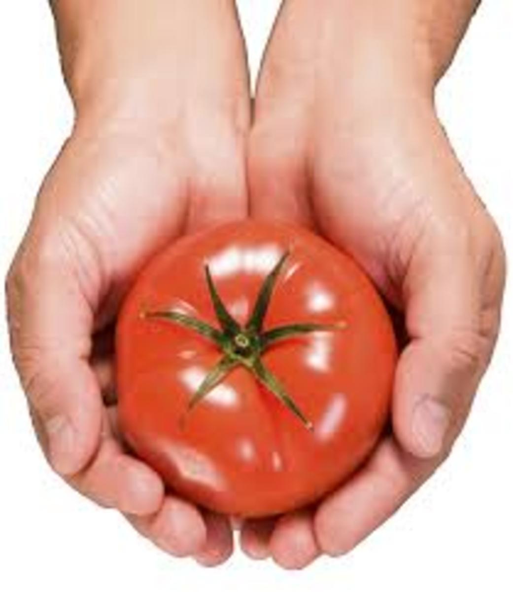 www.reynoldsburgtomatofestival.org  Tomato as an aphrodisiac.