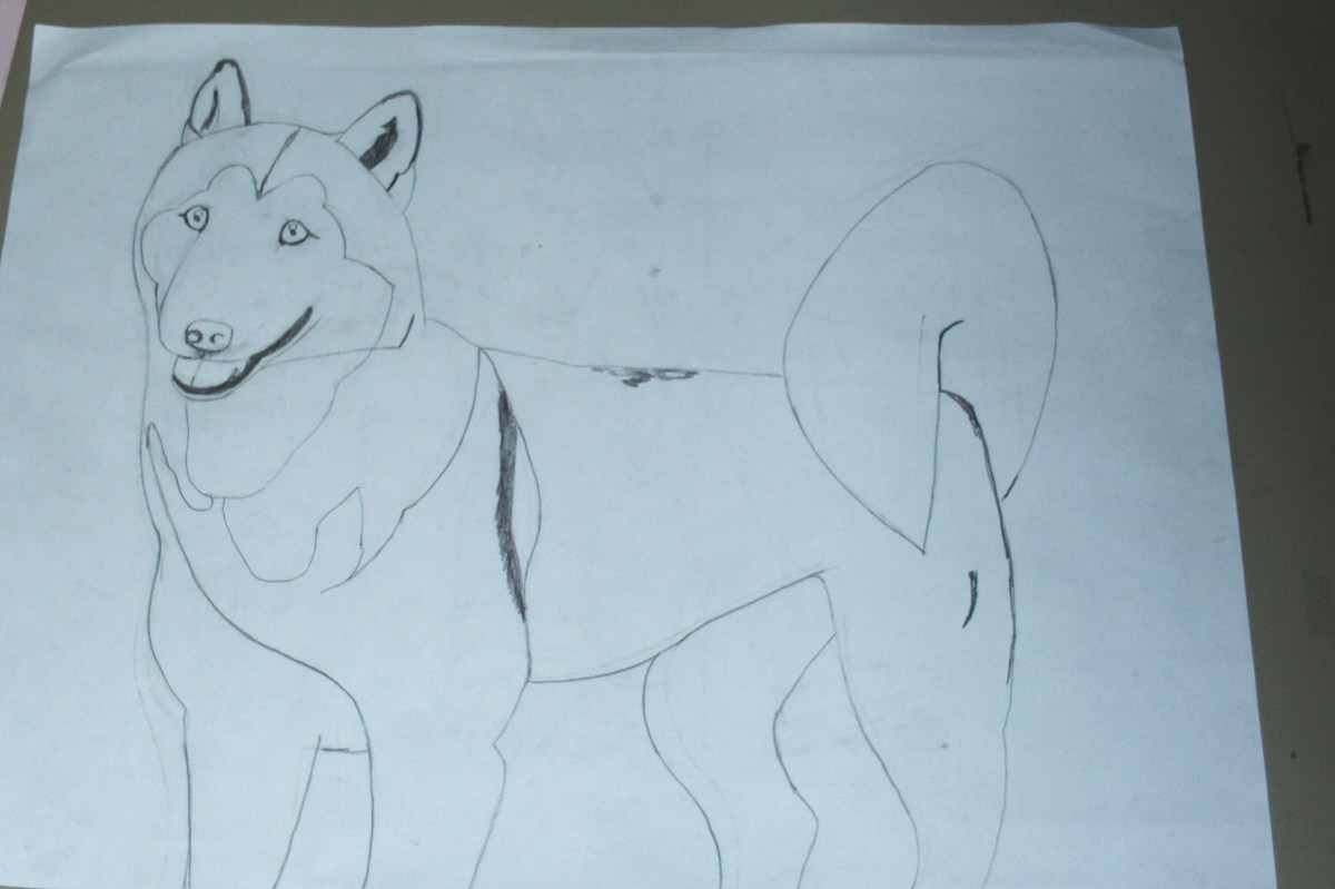 In this step I began to shade in the details on my Siberian Husky Natasha.