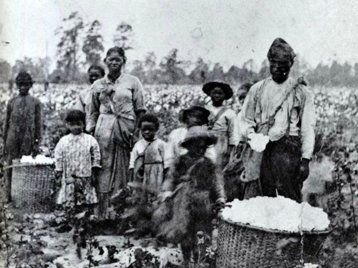 The Hidden Economics Of Slavery Reparations