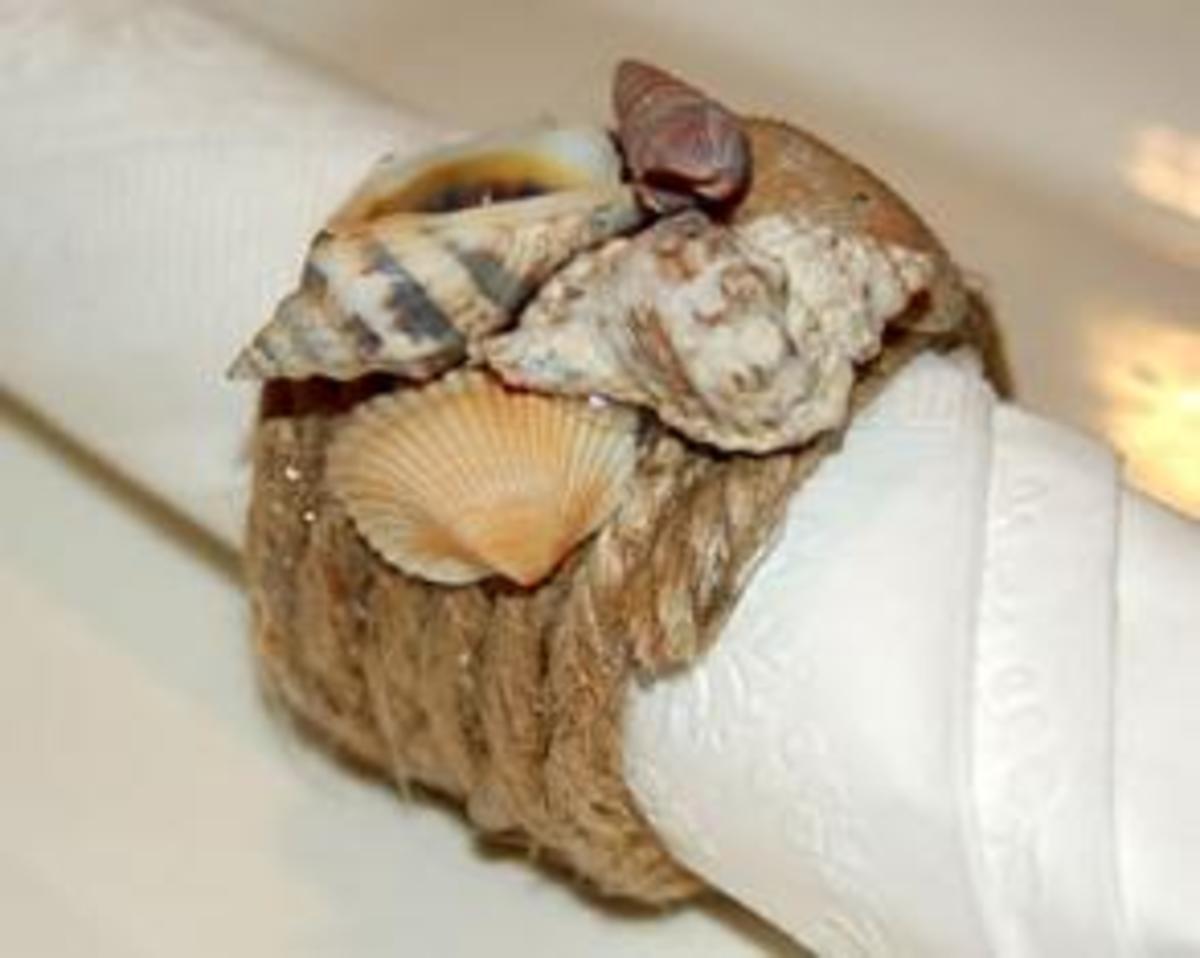 Rope & Shells