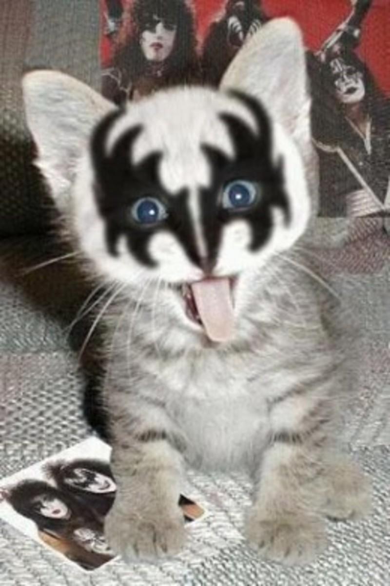 Gene Kittens