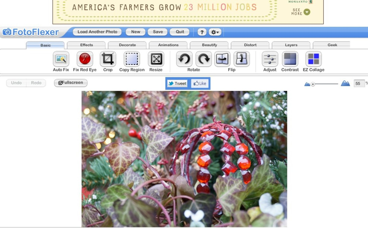 Screenshot of Fotoflexer's tools.